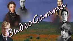 ВидеоGamma